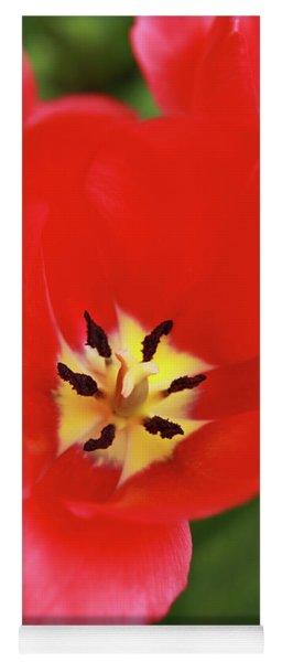 Rouge Bloom Yoga Mat