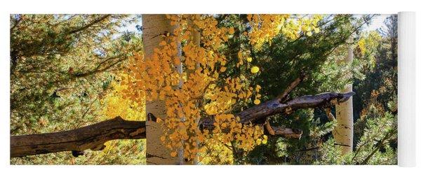Aspen Tree Close Yoga Mat