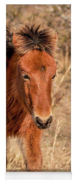 Assateague Island Pony Foal Yoga Mat
