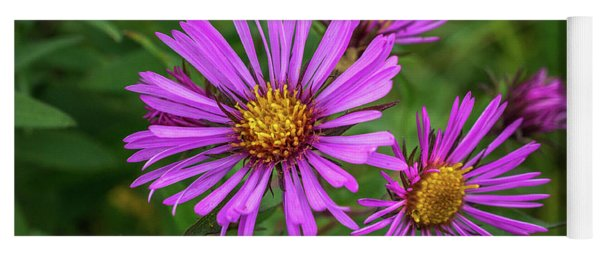 Aster In The Wild Yoga Mat