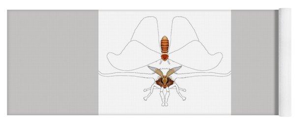 Atlas Moth1 Yoga Mat