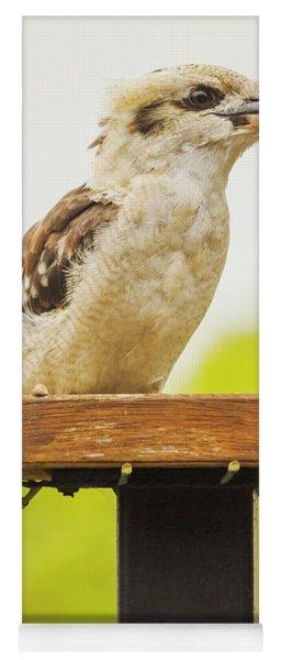 Australian Kookaburra Yoga Mat