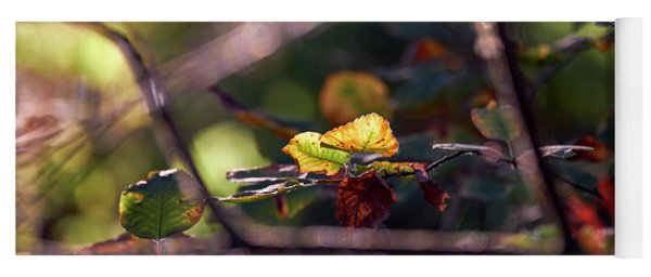 Autumn Beginnings Yoga Mat
