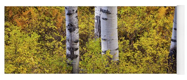 Autumn Contrasts Yoga Mat