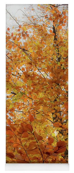 Autumn Explosion 1 Yoga Mat