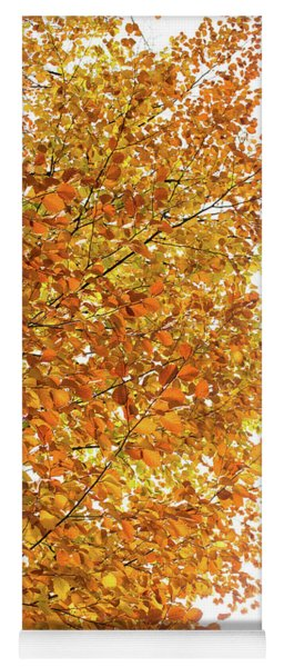 Autumn Explosion 2 Yoga Mat