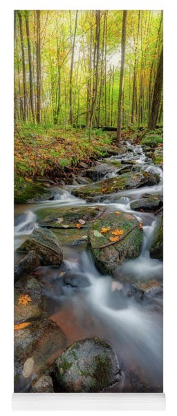 Yoga Mat featuring the photograph Autumn Falling 2 by Bill Wakeley