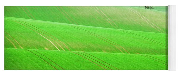 Yoga Mat featuring the photograph Autumn In Moravia 12 by Dubi Roman