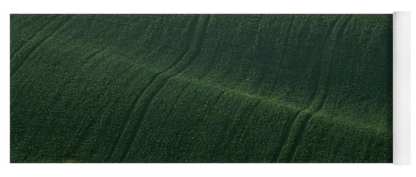 Yoga Mat featuring the photograph Autumn In Moravia 11 by Dubi Roman