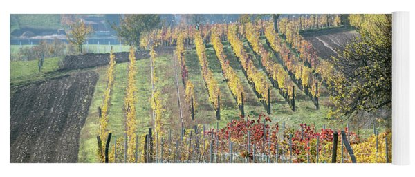 Yoga Mat featuring the photograph Autumn In Moravia 7 by Dubi Roman