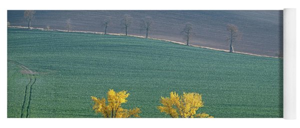 Yoga Mat featuring the photograph The Chestnut Way, Moravia 14 by Dubi Roman
