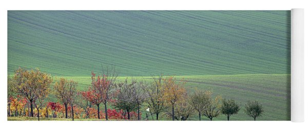 Autumn In South Moravia 18 Yoga Mat