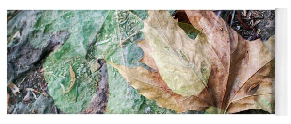 Yoga Mat featuring the photograph Autumn Leaves by Dubi Roman