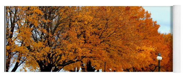 Autumn Leaves In Menominee Michigan Yoga Mat
