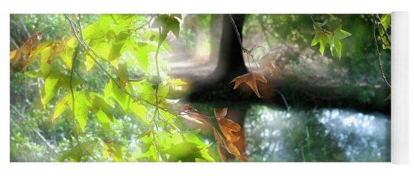 Autumn Leaves In The Morning Light Yoga Mat