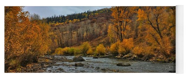 Yoga Mat featuring the photograph Autumn On The Yampa River by Dan Miller