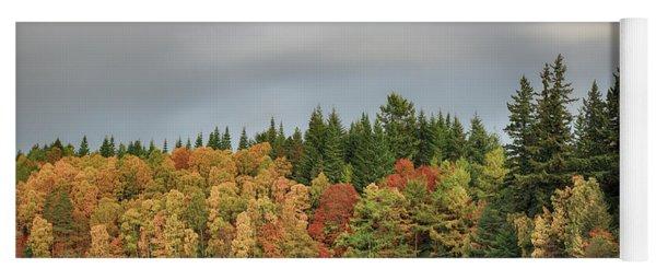 Autumn Tree Reflections Yoga Mat
