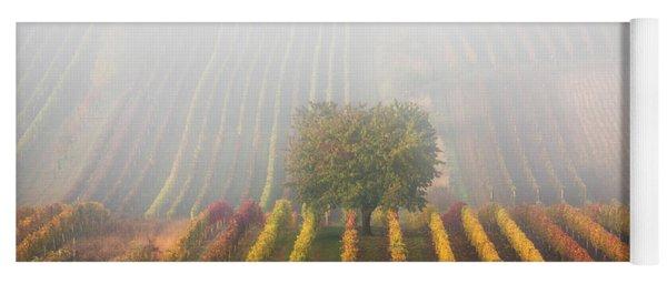 Autumnal Tree In  Fog Yoga Mat