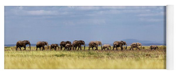 Baby Elephants Leading Herd In Line In Kenya Yoga Mat