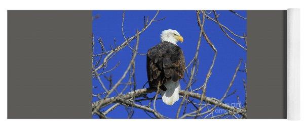Bald Eagle And Blue Sky Yoga Mat
