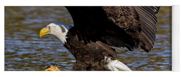 Yoga Mat featuring the photograph Bald Eagle Fishing On The James River by Lori Coleman