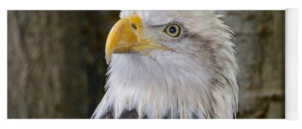 Bald Eagle Portrait Yoga Mat