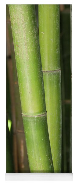 Bamboo Stalk 4057 Yoga Mat