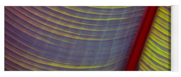 Banana Leaf 8597 Yoga Mat