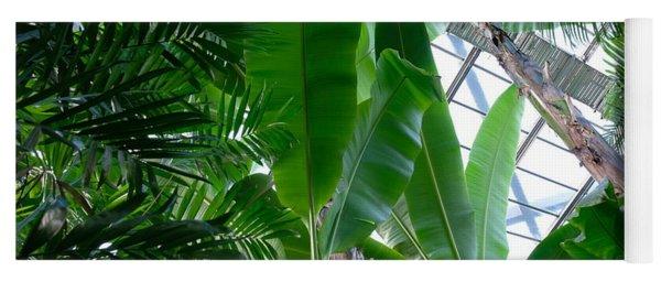 Banana Leaves In The Greenhouse Yoga Mat