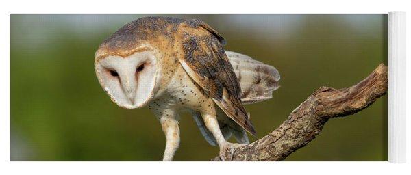 Barn Owl 5151801 Yoga Mat