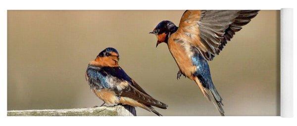 Barn Swallow Conversation Yoga Mat