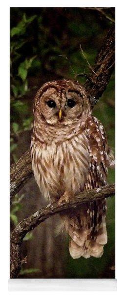 Barred Owl At Dusk Yoga Mat