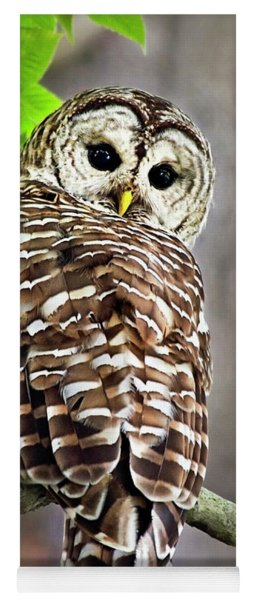 Yoga Mat featuring the photograph Barred Owl by Christina Rollo