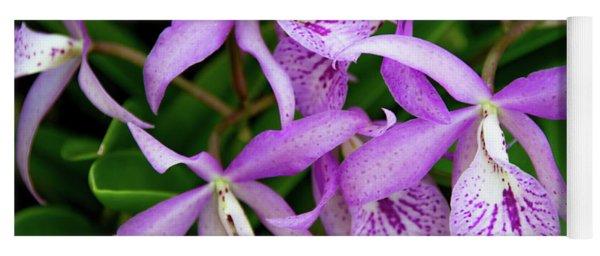 Bc Maikai 'louise' Orchid Yoga Mat