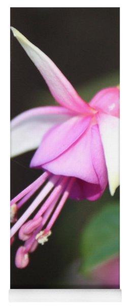 Beautiful Fuchsia Yoga Mat