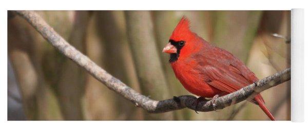 Beautiful Male Cardinal Yoga Mat