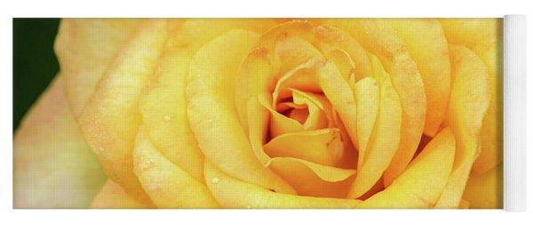 Beautiful Yellow Rose Yoga Mat