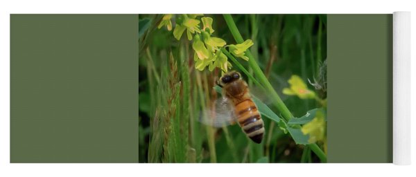 Yoga Mat featuring the photograph Bee And Flower by Lora J Wilson