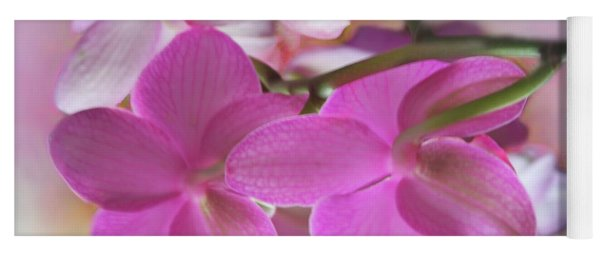 Behind The Orchid Yoga Mat