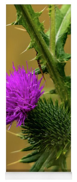 Between The Flower And The Thorn Yoga Mat