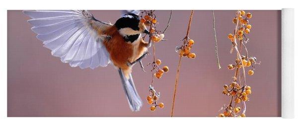 Bird Eating On The Fly Yoga Mat