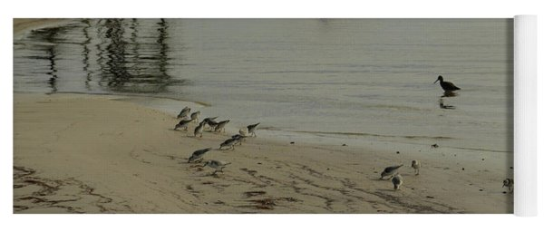 Birds On Beach Yoga Mat
