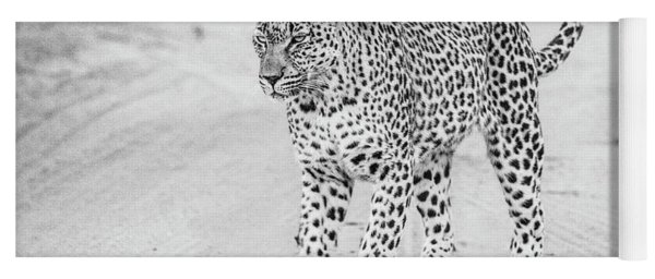 Black And White Leopard Walking On A Road Yoga Mat