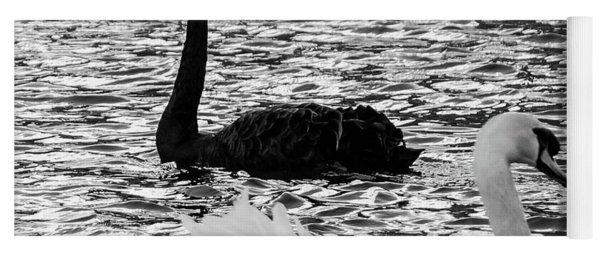 Black And White Swans Yoga Mat