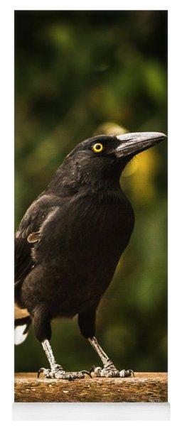 Black Currawong Bird Yoga Mat