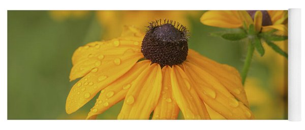 Yoga Mat featuring the photograph Black-eyed Susans by Dale Kincaid