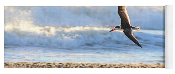 Yoga Mat featuring the photograph Black Skimmer Soaring by Robert Banach