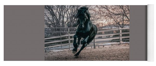 Black Stallion Cantering Yoga Mat