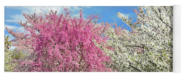 Blossoming Cherry Trees And Sky  Yoga Mat
