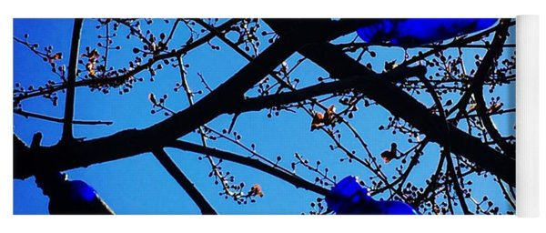 Blue Bottles In Tree Yoga Mat